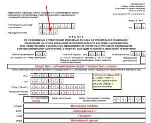 Шифр плательщика страховых взносов ФСС в 2019 году