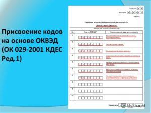 Общие сведения и положения ОКВЭД (ОК 029-2019 (КДЕС ред. 2))