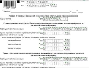 пример заполнения формы РСВ-1 в 2019 году