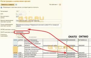 Как узнать ОКАТО по ИНН, адресу и месту рождения с расшифровкой в 2019 году