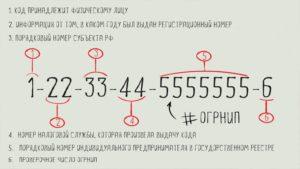 ОГРНИП: что это и где его взять, как проверить и расшифровать