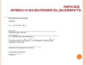пример приказа о назначении на должность