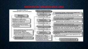 Банкротство юридических лиц: какие основные моменты надо знать