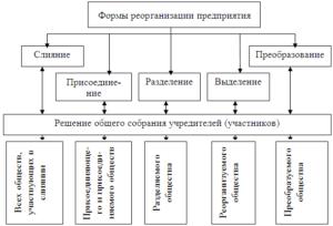 Модели совмещенной реорганизации компании