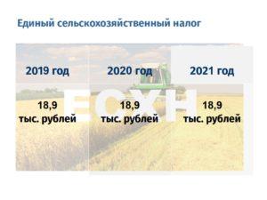 Оплата НДФЛ в 2019 году