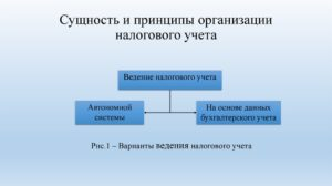 Система налогового учёта на предприятии