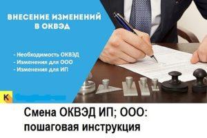Как внести изменения в ЕГРЮЛ ОКВЭД для ИП и ООО в 2019 году
