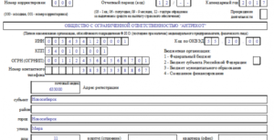 пример заполнения формы 4-ФСС в 2019 году