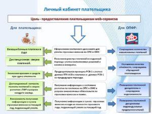 Особенности личного кабинета плательщика страховых взносов в ПФР и ФСС