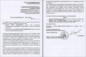 Как подать кассационную жалобу по арбитражному делу в Верховный суд РФ