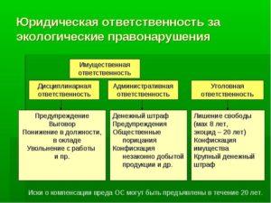 Административно-правовые риски нарушения земель отходами: когда удастся избежать ответственности
