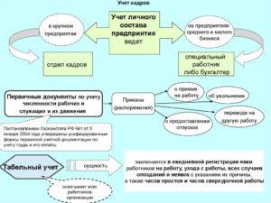 Установление кадрового учета на предприятии с нуля