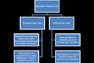 Определение, признаки и порядок установления банкротства юридического лица