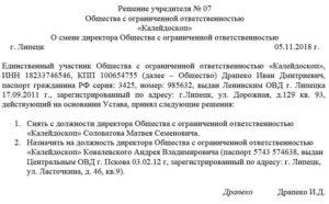 Пошаговая инструкция смены учредителя ООО в 2019 году