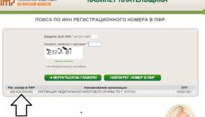 Как узнать регистрационный номер в ПФР по ИНН онлайн
