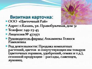 Написание бизнес-плана для открытия цветочного магазина