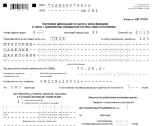 Как заполнить нулевую налоговую декларацию для ИП или ООО на УСН