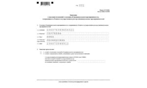 Требования к оформлению формы Р24001