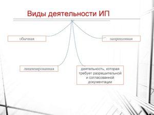 Перечень осуществляемых видов деятельности ИП