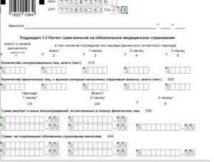 пример заполнения нулевой отчетности РСВ-1 в 2019 году