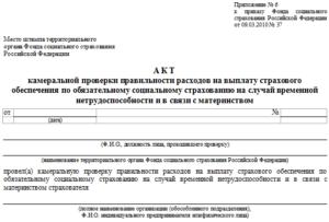 пример акта камеральной налоговой проверки