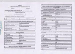Срок действия и предоставления выписки из ЕГРЮЛ: основные понятия