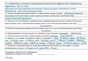 Производственная характеристика для МСЭ: пример заполнения на 2019 год