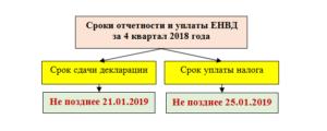 Срок сдачи и уплаты ЕНВД на 2019 год