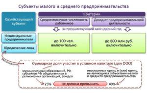 Бухгалтерская отчетность субъектов малого предпринимательства в 2019 году