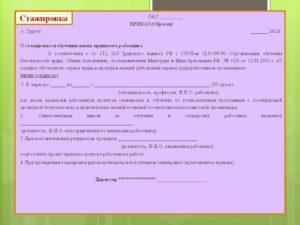пример приказа о стажировке вновь принятого работника