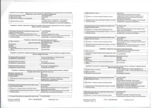Расшифровка выписки из ЕГРЮЛ от ФНС на 2019 год