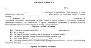 пример трудового договора с испытательным сроком