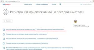 Как открыть ИП через Госуслуги и ФНС онлайн: пошаговая инструкция