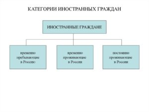 Руководитель организации– иностранный гражданин: инструкция по назначению