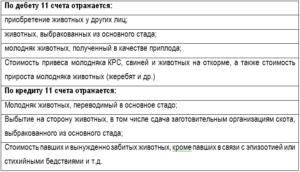 Счет 11 в бухгалтерском учете