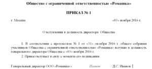 Приказ о назначении директора ООО: пример 2019 года