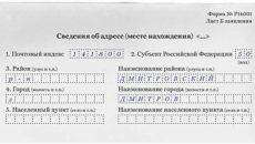 Правила и пример заполнения формы Р13001
