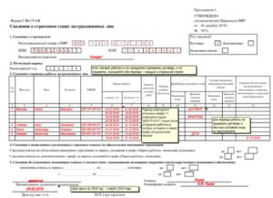 Форма РСВ-2 в 2019 году: кто, куда и когда сдает