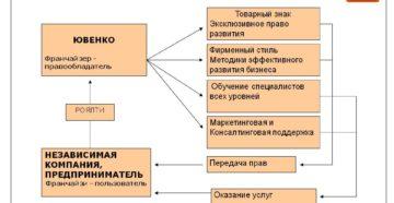 Открытие бизнеса по франшизе, ее определение и свойства