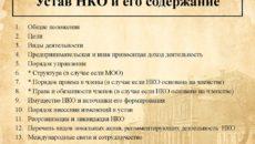 Устав НКО: где взять типовую форму и как разработать свою