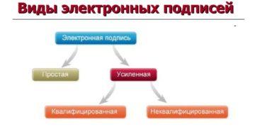 Типы электронных подписей: понятие, виды, отличия и применение