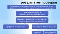 Акт налоговой проверки и порядок его обжалования