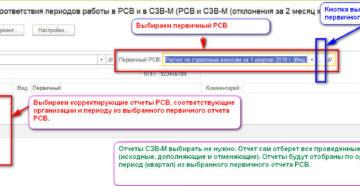 Проверка РСВ и СЗВ-М онлайн и через программу
