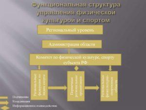 Какие органы управления действуют в