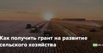 Как получить грант на сельское хозяйство в 2019 году